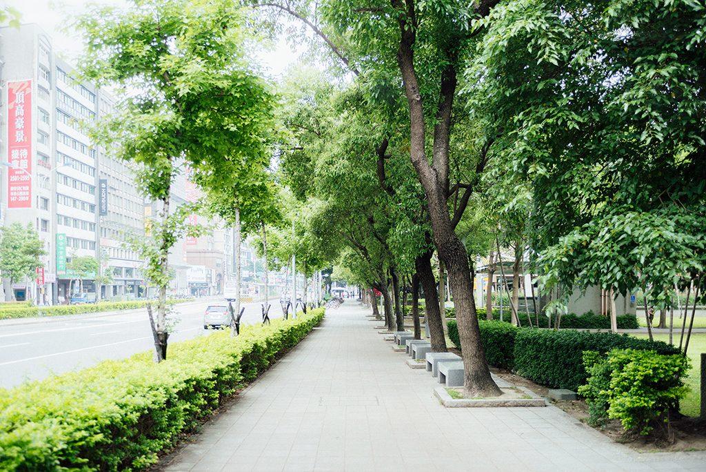 D81 3727 1024x684 - 【自主婚紗】+允宥&珮嘉+