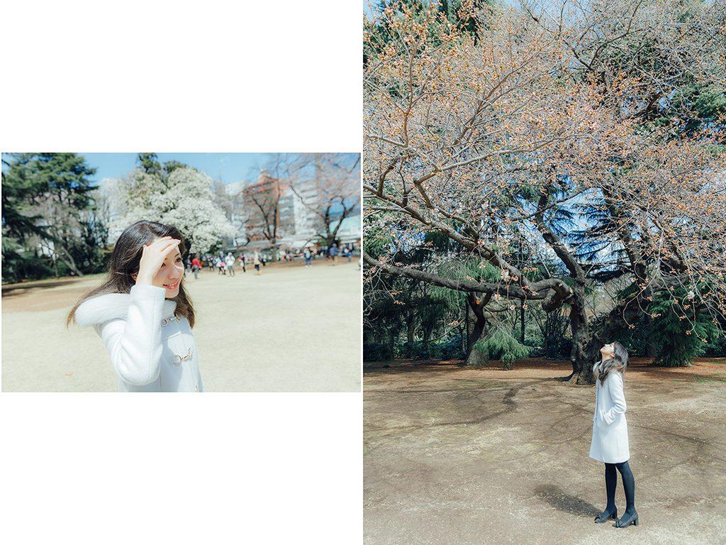 IMG 8774 2 1024x768 - 【海外寫真】桜の时 2018