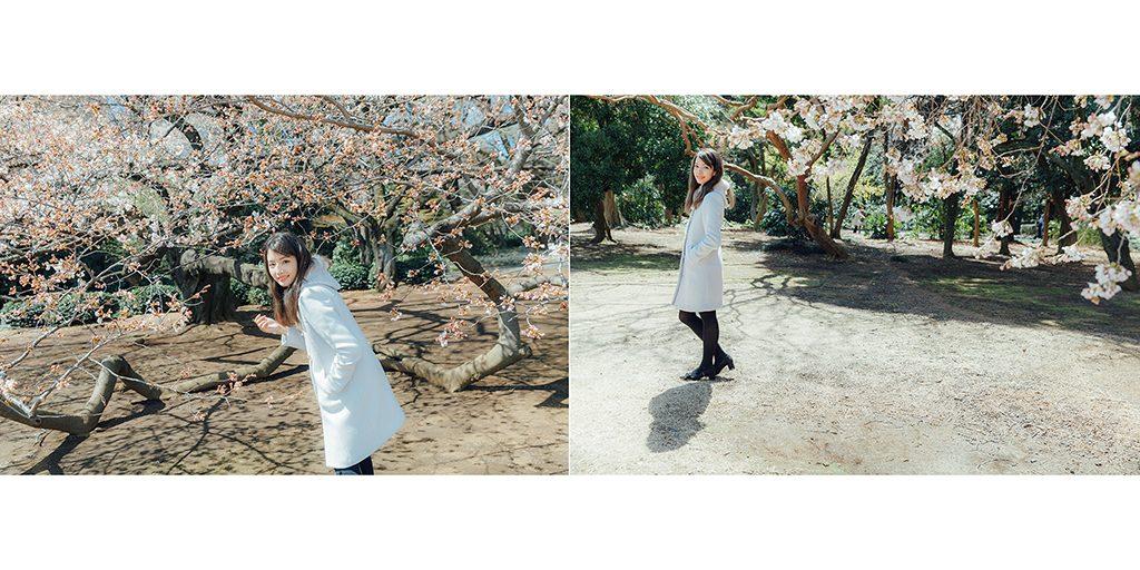 IMG 8844 2 1024x512 - 【海外寫真】桜の时 2018