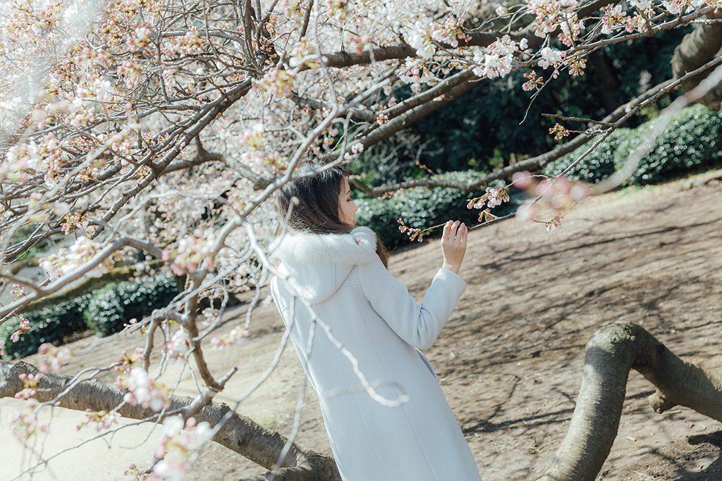 IMG 8862 2 1024x683 - 【海外寫真】桜の时 2018