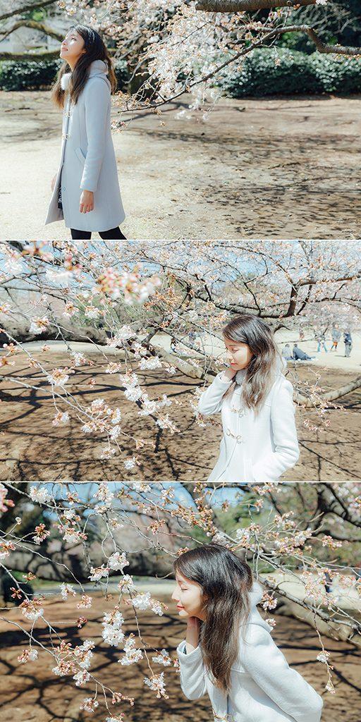 IMG 8881 2 512x1024 - 【海外寫真】桜の时 2018