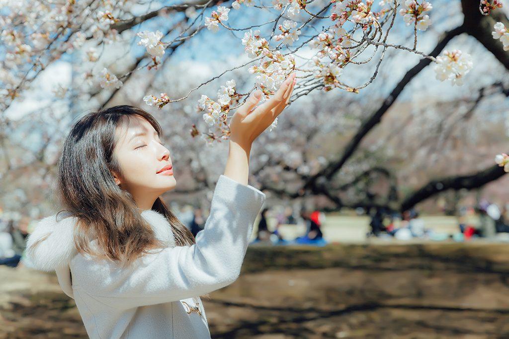 IMG 8931 2 1024x683 - 【海外寫真】桜の时 2018