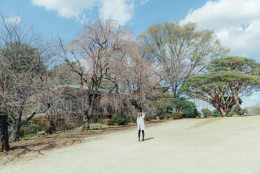 IMG 9178 2 1024x683 - 【海外寫真】桜の时 2018