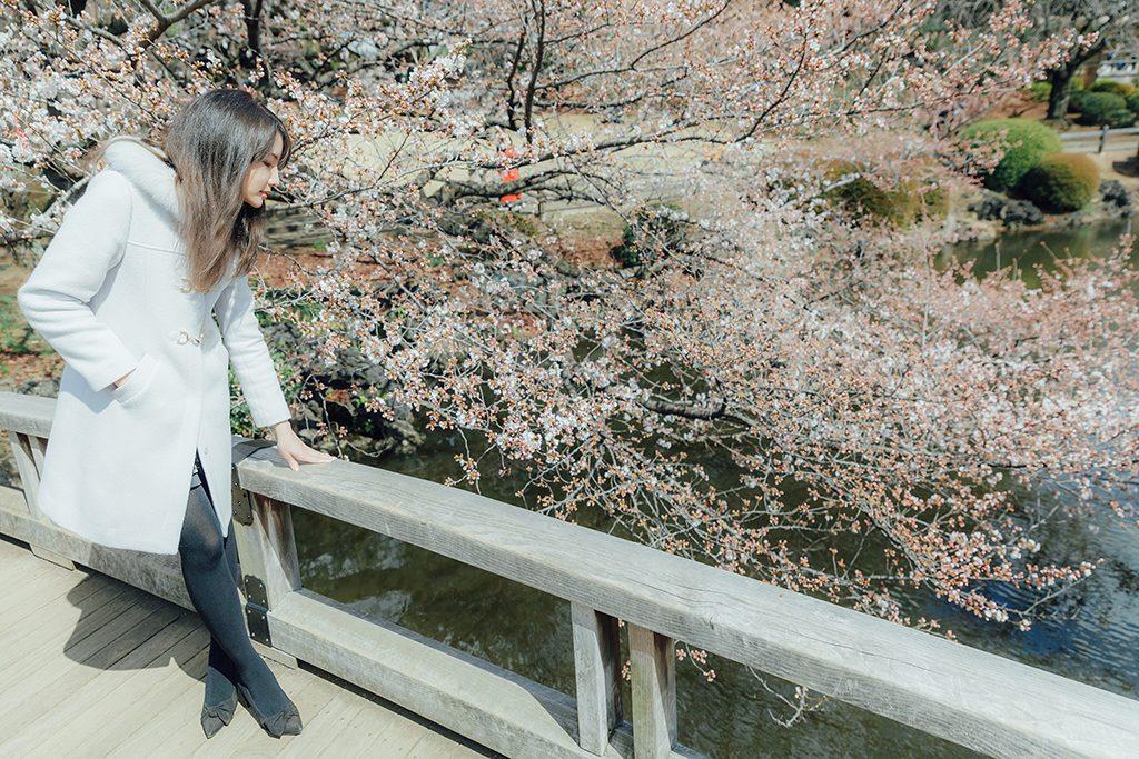 IMG 9232 2 1024x683 - 【海外寫真】桜の时 2018